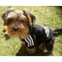 Moleton Para Cães De Pequeno Porte - Pronta Entrega