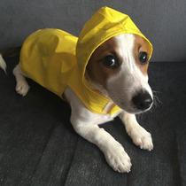 Capa De Chuva Para Cães E Gatos