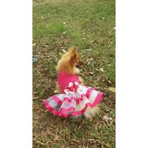 Roupa Pet... Vestido Bailarina Pra Cachorro (frete Grátis)