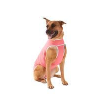 Roupa Pós Cirúrgica Para Cães Fêmea Tam. 2 Ao 8