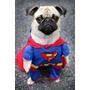 Roupa Fantasia Cachorro Gato Superman Super Homem Tamanho G