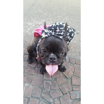 Vestido Dog Monster High( Caveira Grande)pink