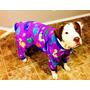 Roupa Cachorro Pijama Big Pet Raças Grandes Pet Lord
