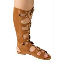 Sandalia Gladiadora Cano Alto -marrom - Rasteira