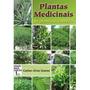 Plantas Medicinais Do Plantio A Colheita