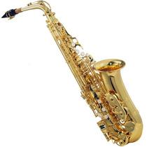 Saxofone Alto Michael Laqueado Wasm35 Em (eb) Com Case