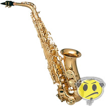 Sax Alto Hofma By Eagle Dourado Case Top O F E R T A