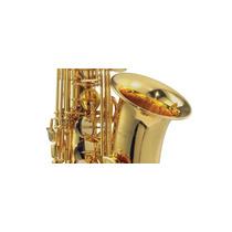 Sax Alto Michael Wasm35 - Loja Dom Maior