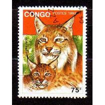 Congo 1992 * Felinos * Gatos Selvagens * Lince