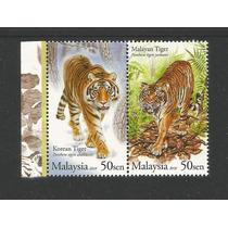 Dams Malaysia Malasia Fauna Felinos Tigres Par Mint