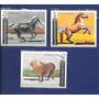 Bulgaria Série 3 Selos Fauna Cavalos De Raça