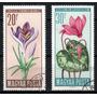 Hungria 1966 * Flores Típicas Regionais .em Cores Naturais