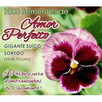 1000 Sementes Amor Perfeito Divididos Em 100 Saquinhos.
