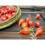 120 Sementes Da Pimenta Bico Biquinho Vermelha Frete Grátis