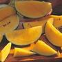 5 Sementes De Melancia Preta Polpa Amarela - Frete Grátis!