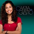 Novela Cama De Gato Completa Em 48 Dvds Frete Gratis