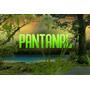 Novela Pantanal Completa Em Hd Edição De Colecionador