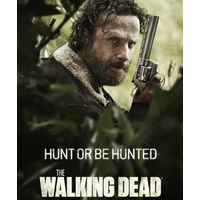 The Walking Dead 1ª 2ª 3ª 4ª E 5ª Temporadas Completa