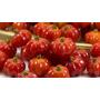 Pitanga Fruta Que Cura 250 Gramas Da Fruta Organica Fresca