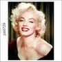 Adesivo Decorativo Parede Marilyn Monroe Atriz Job0729