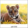Adesivo Decorativo Parede Paisagem Tigre Feroz Lindo Job1059