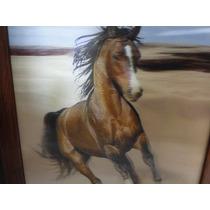Lindo Quadro 3d Profundidade Cavalo De Guerra 31 X 26 Cm