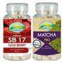 Seca Barriga Goji Berry + Matcha Green Tea Nutrigold