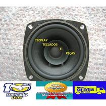 Auto Falante Teclado Korg Pa50 Pa50 Sd Original Frete Grátis