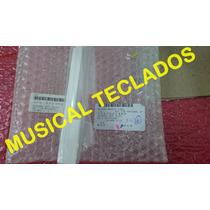 Tecla Dó Ou Fá Teclado Roland Rd800, D70, U20 Frete Grátis