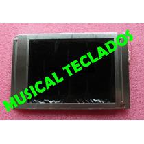 Display Lcd Visor Teclado Roland E-60 ( Sem Tela De Toque )