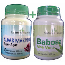 Aloe Vera + Babosa + Algas Marinhas Tratamento Capilar