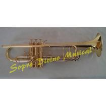 Trompete Sib Weril Wntr1 37 Weingrill Nirschl Produto Novo