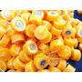 Velas Rechaud Citronela Repelente Lamparina X 100 Und Mosqui