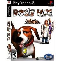 Jogo Dog