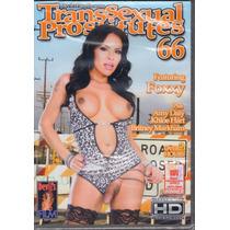 Dvd Transsexual Prostitutes 66 Amy Daly Original Travesti
