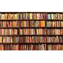 Lote 30 Livros Literatura Nacional / Estrangeira