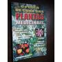 O Poder De Cura Das Plantas Medicinais E Afrodisíacas
