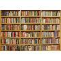 Lote Com 50 Livros Para Revenda Ou Leitura