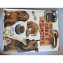 Livro Descobrindo E Aprendendo Cuidando De Cães E Filhotes