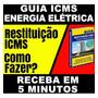 Guia Restituição Icms Energia Eletrica Passo A Passo Leigos