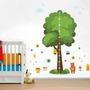 Régua De Crescimento Infantil Vários Modelos