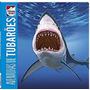 Lenticular 3d Animais Perigosos: Aventuras De Tubaroes