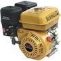 Motor Bfge 4t 13.0cv C/ Sensor Oleo P/e Buffalo Buffalo