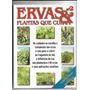 Ervas E Plantas Que Curam Ed 2 Revista