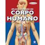 Livro Atlas Corpo Humano Ilustrado 32 Paginas
