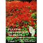 Plantas Ornamentais No Brasil Harri Lorenzi