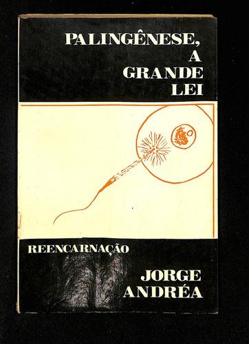 Palingênese, A Grande Lei - Jorge Andréia Original
