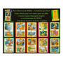 Kit Clássicos Da Bíblia Kit Livro Infantil Clássicos
