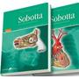 Sobotta Atlas De Anatomia Humana 2 Volumes 22ª Ediç