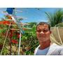 Antena Digital Externa Instalação Em Salvador Ba